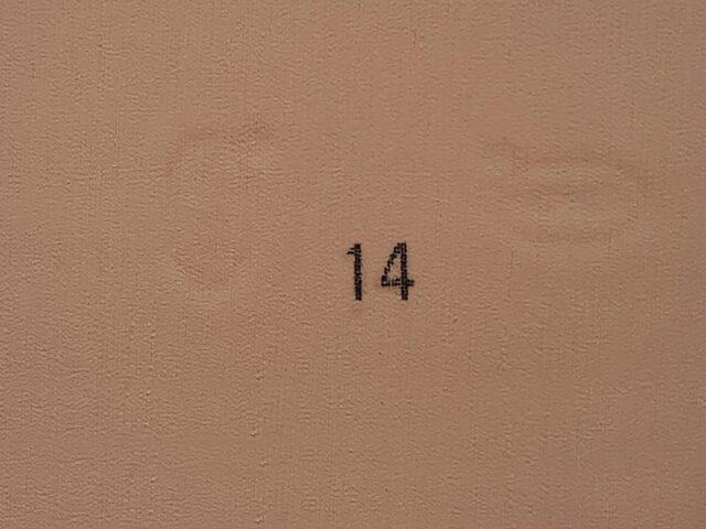 14 дуб